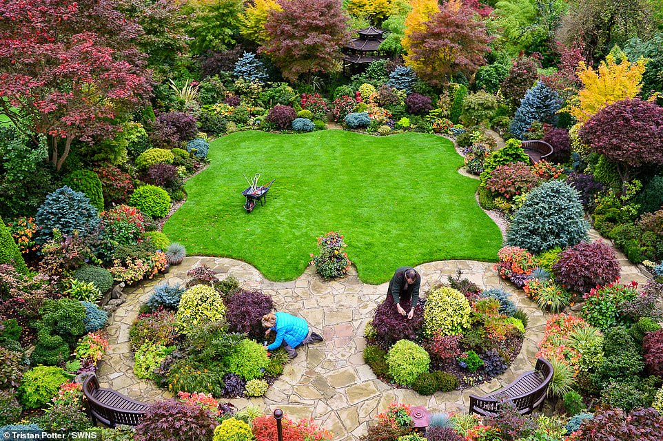 Do befasoheni/ Dy pensionistët krijojnë kopshtin magjik (Fotot)